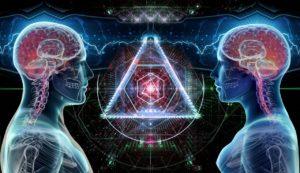 שני מוחות