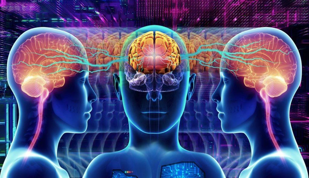 מוחות